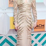 2016 ACM Awards — Best Dressed