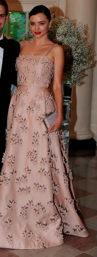 Miranda-Kerr-President-Obama-Hosts-Nordic-Leaders-For-State-Dinner-08